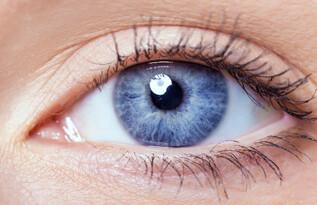 Irisdiagnose Heilpraktiker
